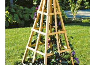 Пирамидальная опора для вьющихся растений