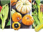 Овощи второго ряда