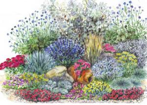 Клумба для ленивых - оформляем цветник на бедной, сухой почве