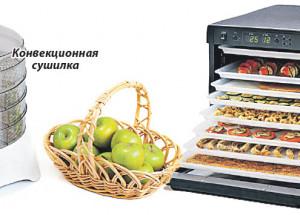 Как выбрать электросушилку для фруктов и овощей
