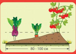 Не выдержали испытание выращивание треугольником