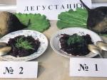 Эксперименты по выращиванию свеклы