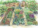 Цветник в огороде