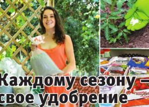 Как в магазине правильно выбирать удобрения для растений