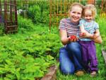 Как правильно посадить клубнику(землянику) нескольких сортов