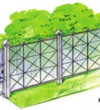 Как красиво оформить забор на дачном участке