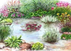 Как оформить декоративный пруд в саду на даче