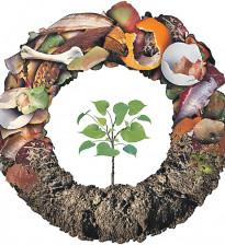 Натуральные удобрения. Берем самое ценное