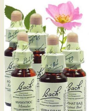 природные лекарства, припарат «Цветы Баха