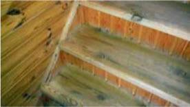 Самодельная лестница с подступенками из простой вагонки и ступенями из половых досок. Этой лестнице уже 10 лет. Она не разболталась и служит отлично. Только ступени чуть стерлись и поскрипывают.
