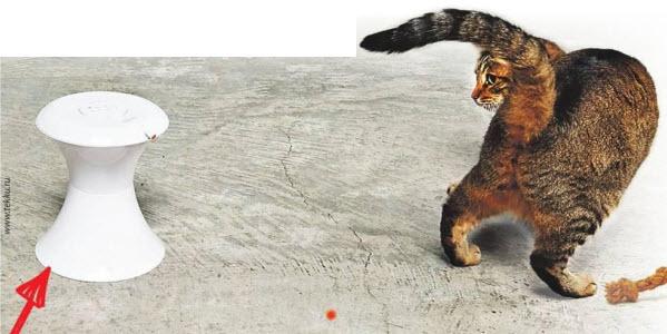 Робот для кота