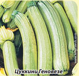 Цуккини Геновезе